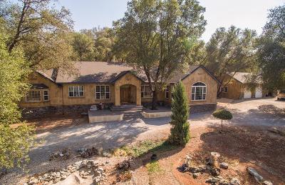 Placerville Single Family Home For Sale: 5331 Green Valley Road