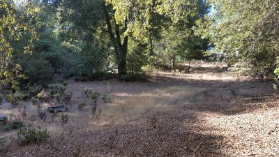 Pine Grove Residential Lots & Land For Sale: 2 Toyon Rd