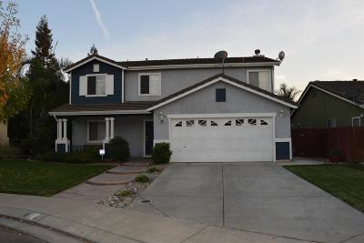 Modesto Single Family Home For Sale: 2004 Amaretto Drive