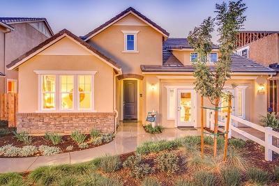 San Joaquin County, Stanislaus County Single Family Home For Sale: 1003 Loretelli Drive
