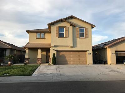 Sacramento Single Family Home For Sale: 9543 Blue Mountain Way