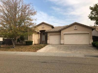 Elk Grove Single Family Home For Sale: 8539 Mountain Bell Drive