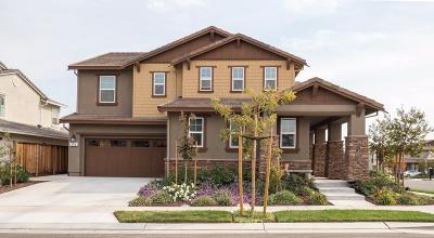 Mountain House Single Family Home For Sale: 996 South Fulton Street