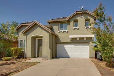 Elk Grove Single Family Home For Sale: 8482 Patina Way