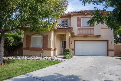 Elk Grove Single Family Home For Sale: 2704 Dinwiddie Way