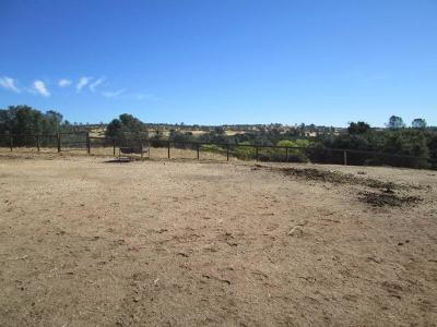 Amador County Residential Lots & Land For Sale: 946 Carbondale Road