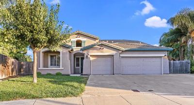Stockton, Lodi Single Family Home For Sale: 10420 Danube Court
