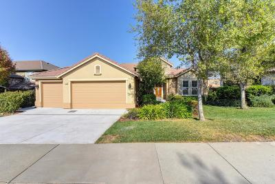 El Dorado Hills Single Family Home For Sale: 1169 Souza Drive