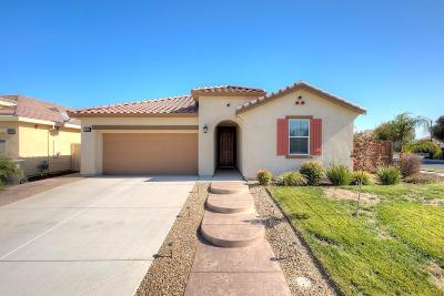 Single Family Home For Sale: 16828 Ore Claim Trail Trail