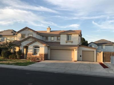 Manteca Single Family Home For Sale: 739 Amy Way