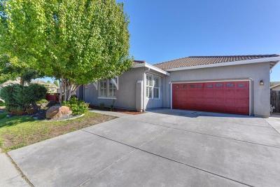 Sacramento Single Family Home For Sale: 8201 Jose Bento Way