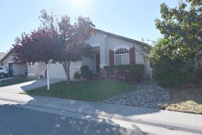 Rocklin Single Family Home For Sale: 2246 Misty Hollow Ct.