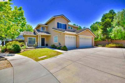 Livermore Single Family Home For Sale: 11 Fawn Drive