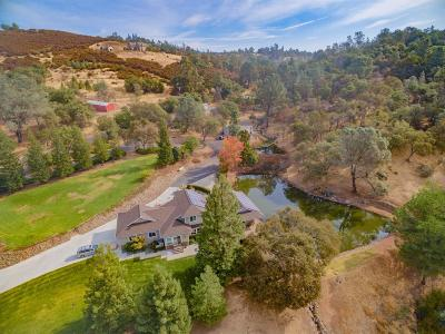 El Dorado Hills Single Family Home For Sale: 1910 Salmon Valley Lane
