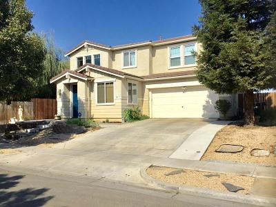 Patterson Single Family Home For Sale: 1413 Jake Creek Drive