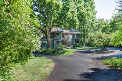 Modesto Single Family Home For Sale: 2507 River Road