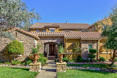 El Dorado Hills Single Family Home For Sale: 717 Spumante Court