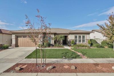 Manteca Single Family Home For Sale: 2451 Ashbridge Lane