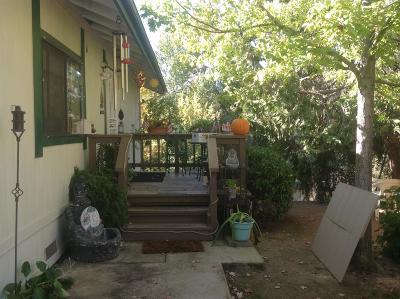 Placerville Single Family Home For Sale: 2815 Debbie Lane
