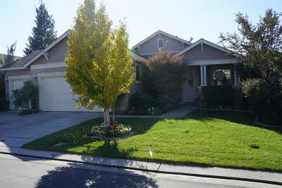 Waterford Single Family Home For Sale: 13206 Waterway Drive