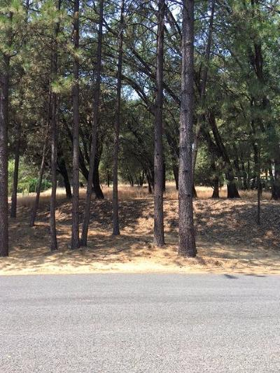 Grass Valley Residential Lots & Land For Sale: 16570 Joey Court