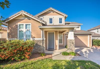 Rancho Cordova Single Family Home For Sale: 12039 Erato Circle
