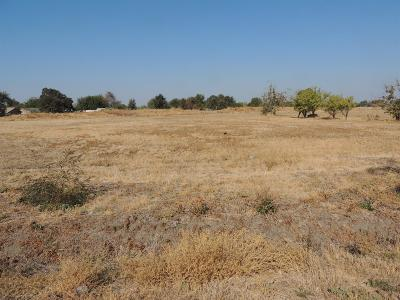 Stockton Residential Lots & Land For Sale: 2111 Ralph Avenue
