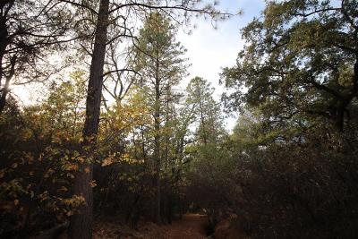 Nevada County Residential Lots & Land For Sale: 11512 Eddy Ranch Road