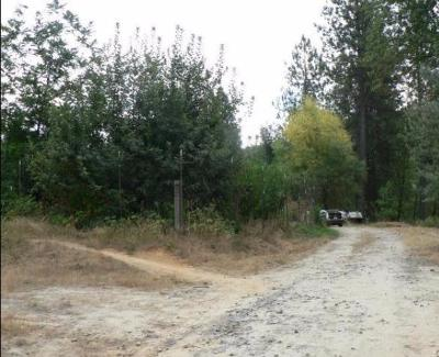 Butte County Residential Lots & Land For Sale: 522 Galen Ridge Road