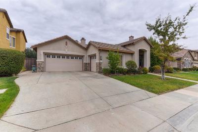 Rancho Cordova Single Family Home For Sale: 11878 Delavan Circle