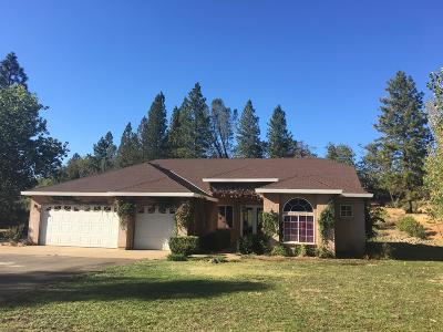 Placer County, Yuba County, Sutter County Single Family Home For Sale: 14838 Toby Tyler Way