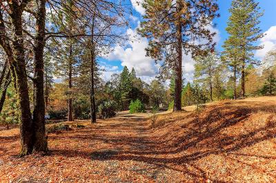Nevada County Residential Lots & Land For Sale: 10407 South Ponderosa Way