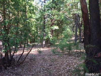 Amador County Residential Lots & Land For Sale: 16920 Golf Links Ct.