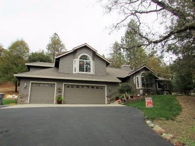 Foresthill Single Family Home For Sale: 5035 Red Rock