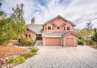 Auburn Single Family Home For Sale: 250 Hidden Creek Drive