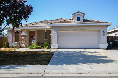 Elk Grove Single Family Home For Sale: 10124 Waterfield Drive