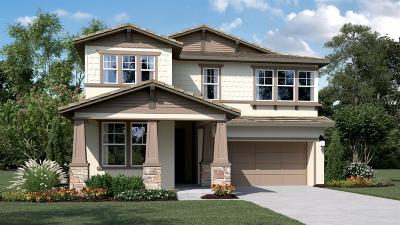 Mountain House Single Family Home For Sale: 962 South Carlo Street