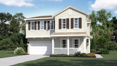 Mountain House Single Family Home For Sale: 986 South Carlo Street