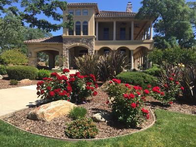 El Dorado Hills Single Family Home For Sale: 185 Powers Drive