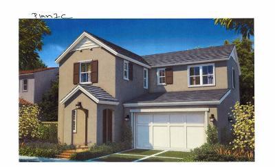 El Dorado Hills, Cameron Park, Folsom Single Family Home For Sale: 944 Bracken Ct.