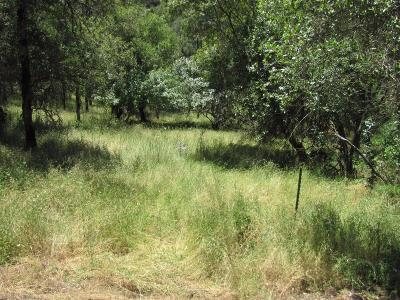 El Dorado County Residential Lots & Land For Sale: 6839 Beaver Pond Creek