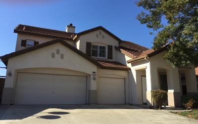Elk Grove Single Family Home For Sale: 8226 Faulkner Way