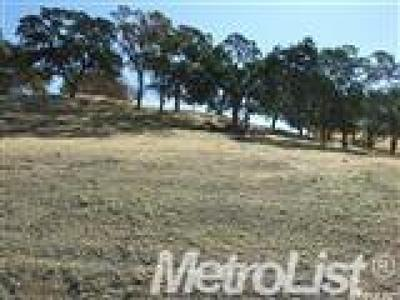 Lincoln Residential Lots & Land For Sale: 3187 Vista De Madera