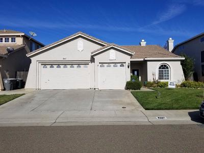 Elk Grove Single Family Home For Sale: 8217 Wooded Brook Drive