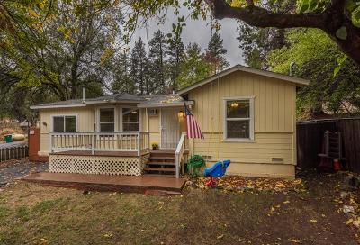 Placerville Single Family Home For Sale: 2894 Tunnel Street