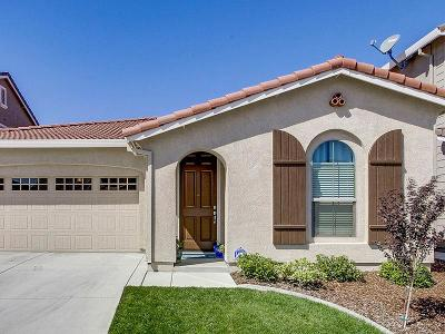 Rocklin Single Family Home For Sale: 810 Berry Creek Drive