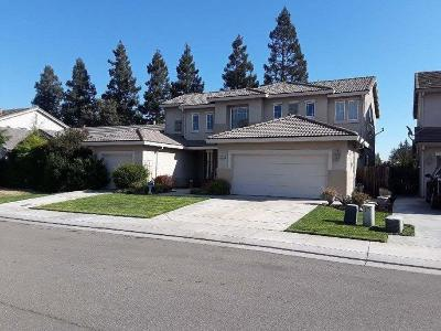 Stockton Single Family Home For Sale: 9756 Palazzo Drive
