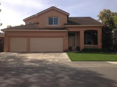 Elk Grove Single Family Home For Sale: 8640 Scarlet Sage Way