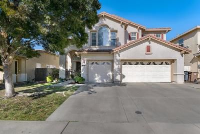 Elk Grove Single Family Home For Sale: 9067 Wharton Way