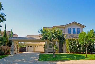 Folsom  Single Family Home For Sale: 1824 Swinton Drive